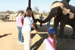 me-and-elephant